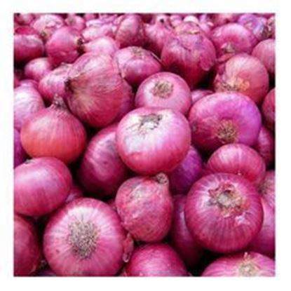 Picture of Onion 1 Kg