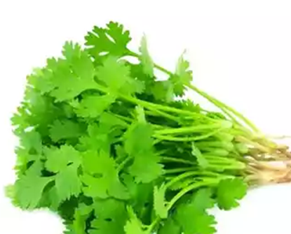 Picture of Coriander Leaves 100 gm