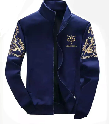 Picture of Men's Casual Winter Jacket - Ati-005